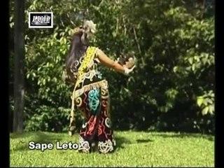 Sape Leto