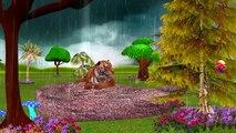 Tiger Cartoon Singing Rain Rain Go Away Nursery Rhymes And Finger Family Rhymes For Children