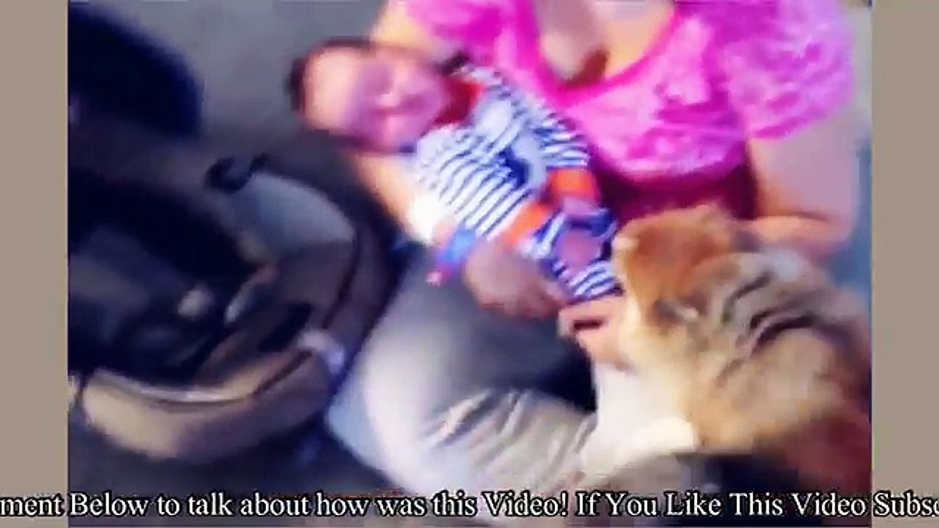 Best Funny Animals & Babies Compilation 2016 || Indian Baby Funny Video with Funny Pets 2016