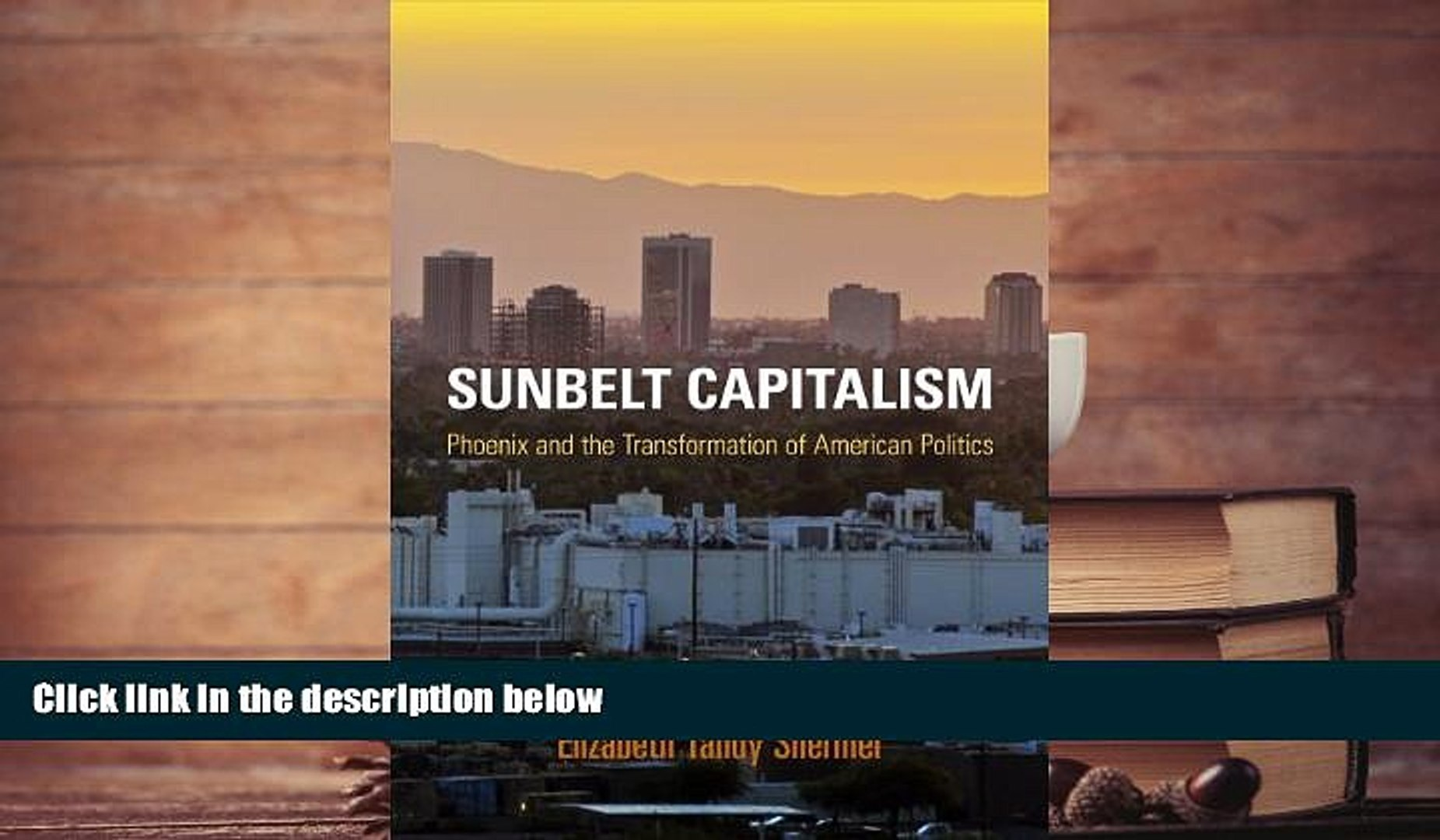 Best Price Sunbelt Capitalism: Phoenix and the Transformation of American Politics (Politics and