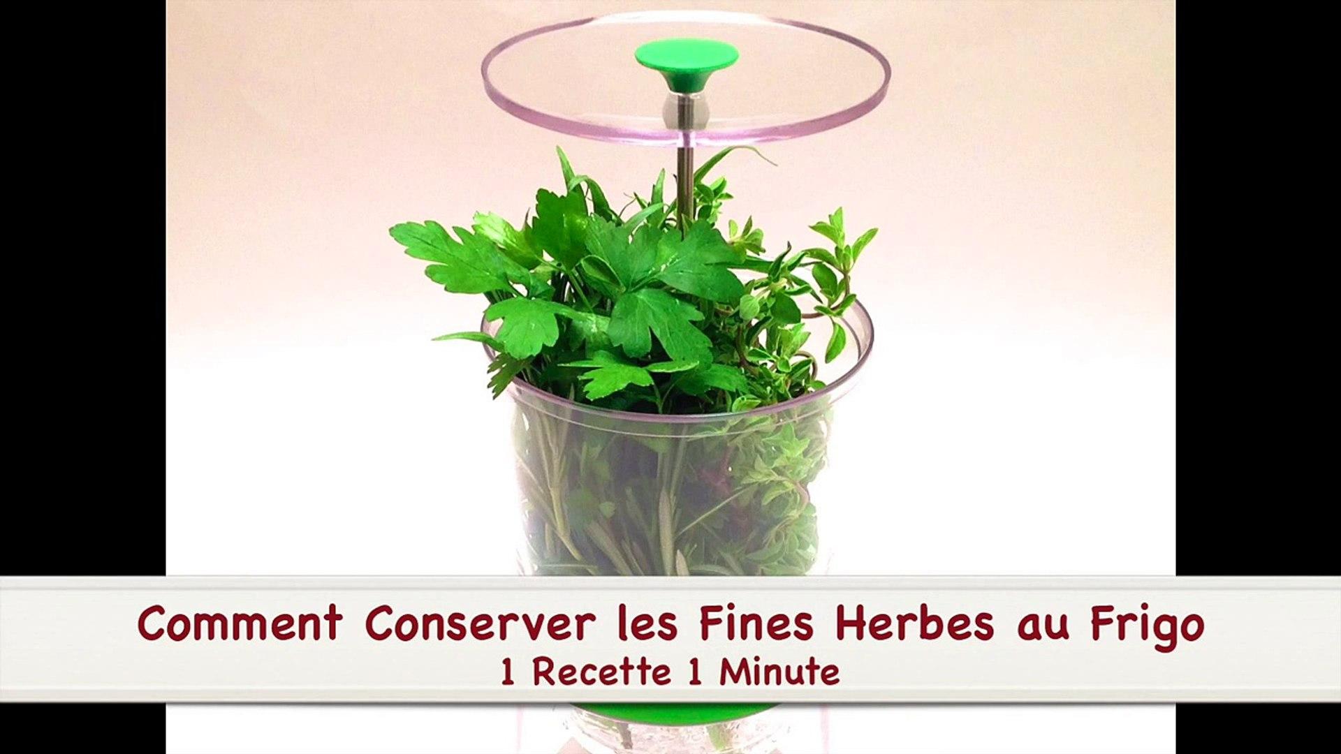 Comment Ranger Dans Un Frigo comment conserver les fines herbes au frigo (hd)-jpjpbpckqiu.mp4