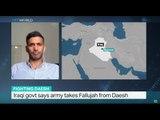 Iraqi govt says army takes Fallujah from Daesh, Ammar Karim reports