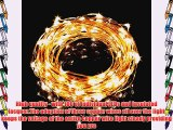 Ollny Waterproof Copper Wire String Lights 100 LED 33ft Starry String Lights Steady on + 12V