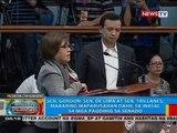 Sen. Gordon: Sen. de Lima at Sen. Trillanes, maaaring maparusahan dahil sa inasal sa mga pagdinig