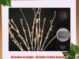 Floral Lights Lighted Willow Branch with snow (set of 3 Branches) with 96 bulbs 40 inches