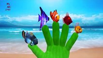 Fish Finger Family Rhyme   Animated Fish Finger Family   Cartoon Fish