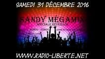 GENERIQUE SANDY MÉGAMIX - EMISSION SPECIALE REVEILLON - 31/12/2016 - Animé et mixé par Sandy