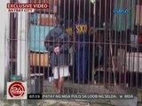 24 Oras: Mayor Rolando Espinosa Sr., binasahan pa rin ng search warrant kahit patay na