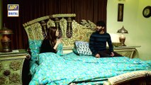 Watch Bandhan Episode 94 - on Ary Digital in High Quality 29th December 2016