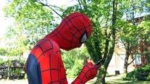 Spiderman vs Joker vs Pokemon Go! Superhero Fun in Real Life playing Pokemon Go