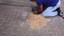 Sauvetage d'un chien coincé sous les pavés du trottoir