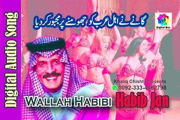 Wallah Habibi Official Video Song | Habib Jan | Latest Song 2017 | Digital box