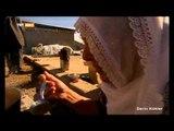 Adana'da Pestil Yapımı - Derin Kökler - TRT Avaz
