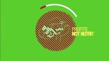 Natural Purium Organic Kamut Blend Review Purium