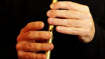 Musique irlandaise- My Mind Will Never Be Easy - Tin Whistle