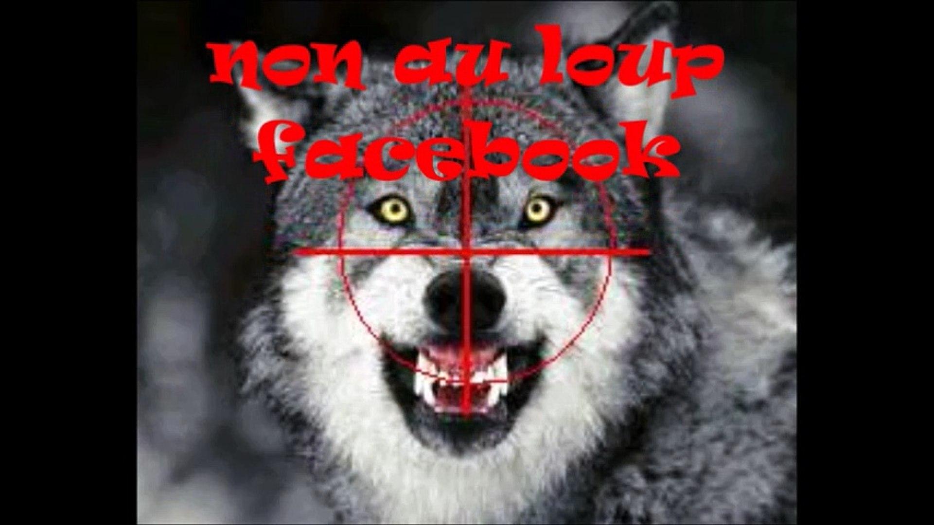 Encore vivante apres l'attaque du loup