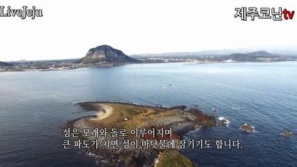 [제주도코난tv]제주도섬속의 섬 형제섬