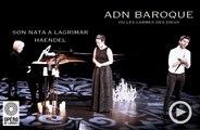 Théophile Alexandre / Opéra de Limoges / Son Nata A Lagrimar Live