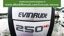 Problems with EVINRUDE ETEC G2 2 stroke motor REVIEW - video