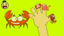 Kids Song | 2D Crab Finger Family Video | Nursery Rhymes Songs for Babies