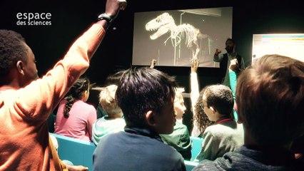 "L'expo ""Plumes de dinosaure !"""