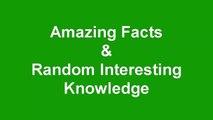 Amazing Facts & Interesting Knowledge! Fun Random Facts-or4zZGcAfIA