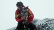 Dean Potter - World's First Wingsuit BASE Jumping Dog