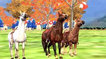 Horse Rhymes For Children | 3D Color Songs For Kids | Horse Racing Video | Animal Rhymes For Kids