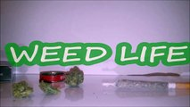 How to roll COLORADO joint WEED Comment rouler un joint a la hollandaise AMSTERDAM PARIS 2017-ejRQjCecMoY