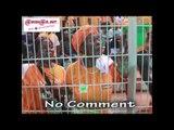 No comment: le match CIV-Sierra Leone vécu par des supporters des Eléphants