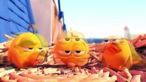 Angry Birds. Their playful chicks. Funny cartoon about birds.