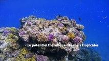 DCNS Energies : un nouvel acteur industriel des énergies marines renouvelables