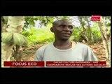 Business 24  / Focus Eco - Cacao culture /Sassandra : Une cooperative réalise des actions sociales