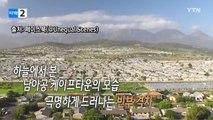 하늘에서 본 한 도시의 극명한 빈부격차 / YTN (Yes! Top News)