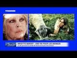 """Brigitte BARDOT : L'Interview choc """"L'amour des animaux m'a sauvé la vie"""""""