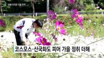 연휴 마지막 날...성큼 다가온 가을 만끽 / YTN (Yes! Top News)
