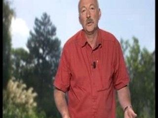 Visionnez les Cours Vidéo de Comment traiter des tomates atteintes de mildiou