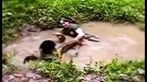 Most amazing wild animals attack   Giant anaconda attacks   Biggest python snake attacks human