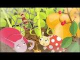 Çocuk ve Ramazan 37.Bölüm - TRT DİYANET