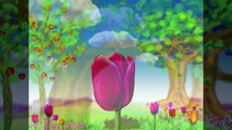 Plant a Tree Children's Song _ Earth Day _ Go Green _ Save the Earth _ Patty Shukla-dxyNZTy1uRA