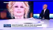 Brigitte Bardot Interview complète sur TV5 monde le 06 01 2017