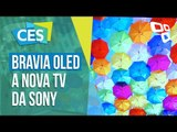 Bravia OLED: os novos televisores da Sony - CES 2017 - TecMundo