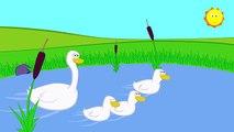 Childrens Songs - Three Little Ducks - Kid's Nursery Rhymes, Music & Songs