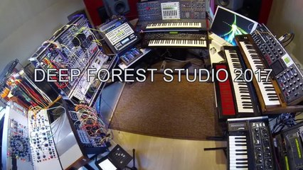 DEEP FOREST STUDIO 2017