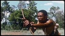 download film crazy safari subtitle indonesia