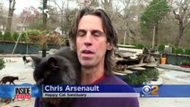Man Who Lives With 300 Rescued Cats Turns Home Into Loving Sanctuary-6x8lpWnipeE