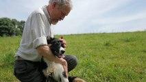 Instaurer une relation de confiance maître-chien