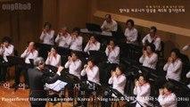 Dàn nhạc Pasqueflower Harmonica Ensemble ( Korea ) - Hòa tấu harmonica - Nắng xuân 추억의 쏘렌자라 Solenzara (2016)