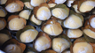 Amazing Street Food, Khmer Street Food, Asian Street Food, Cambodian Street food #31
