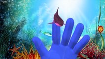 Sea Animals Dolphin And Shark Finger Family | Whale Finger Family And More Nursery Rhymes